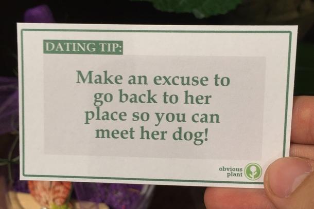 Dating joke quotes