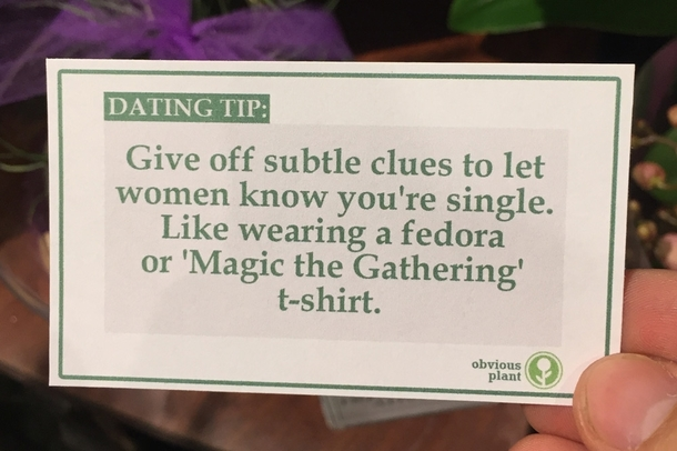 Dating Sites Top 20