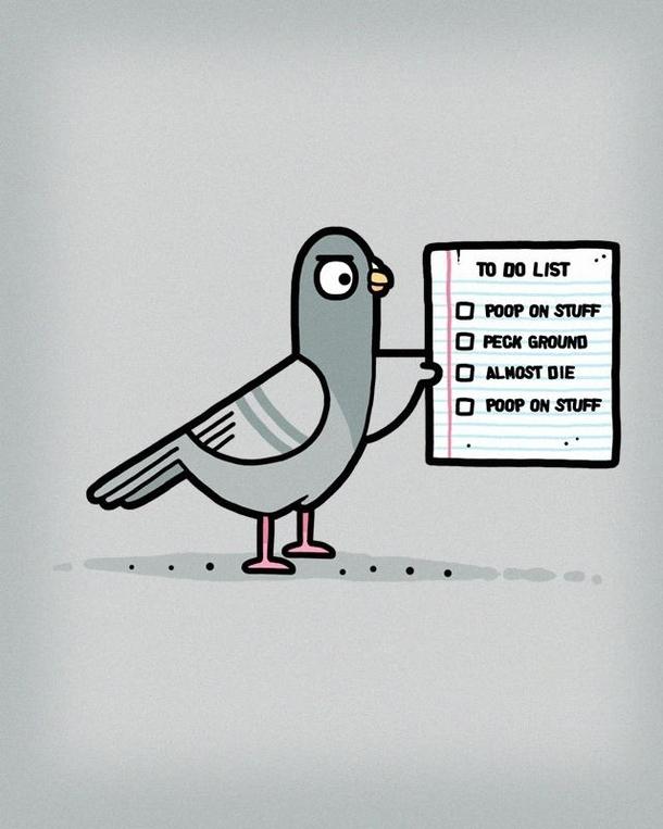 pigeon to do list 251542 pigeon to do list meme guy