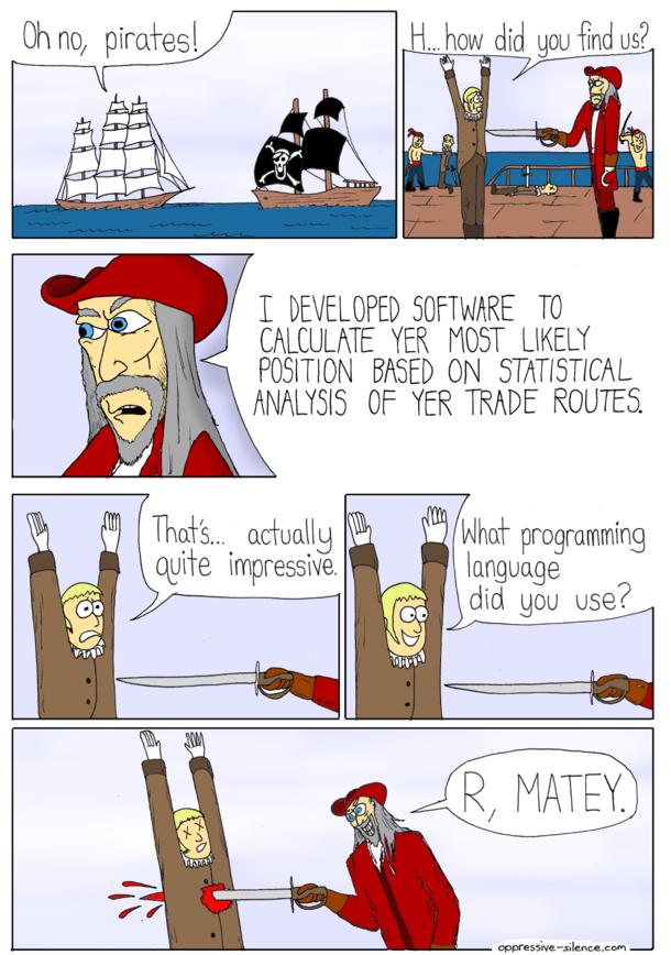 Pirates and Software
