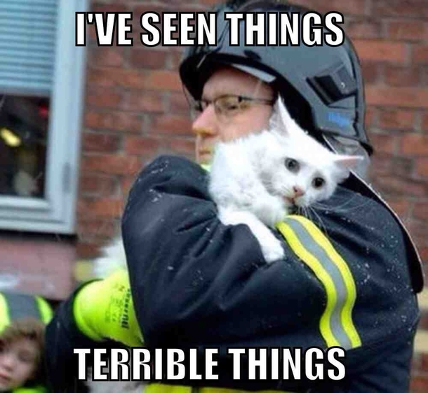 Complex PTSD In Pictures, Memes & GIFs ...