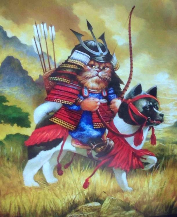 Классные картинки кота самурая, тренажерный зал приколы