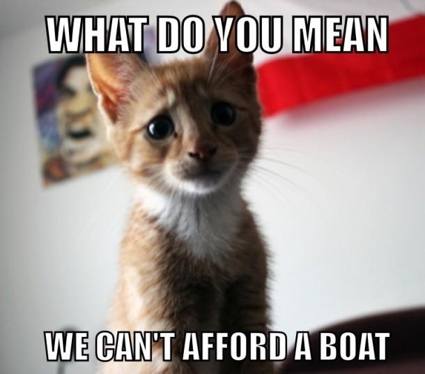 Super Sad Cat Meme