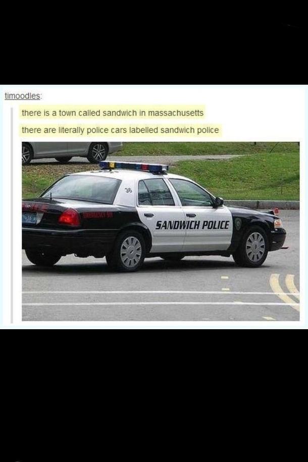Sandwich Police Meme Guy