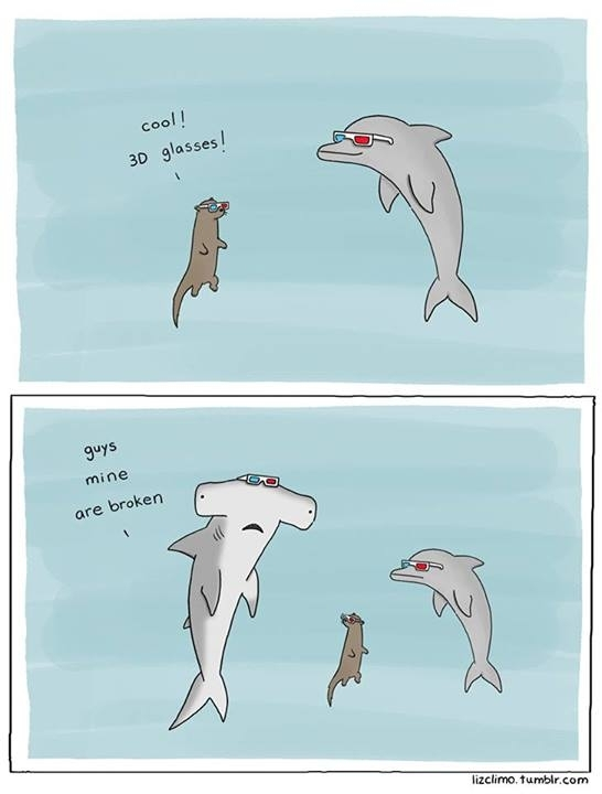 Since sharks are trending