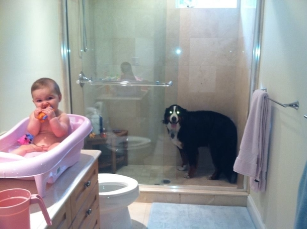 So my wife sings the same song for our daughters bath time as we used to sing for our dogs showers This is what happens every time