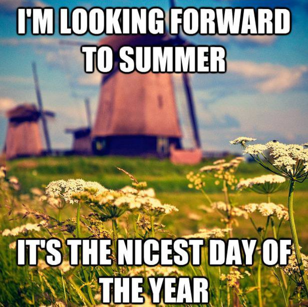 Summer in the Netherlands