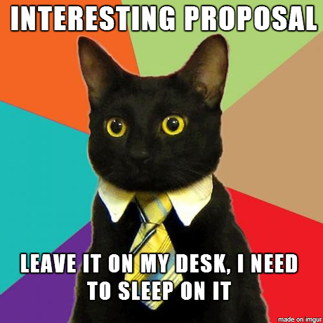 business cat proposal meme
