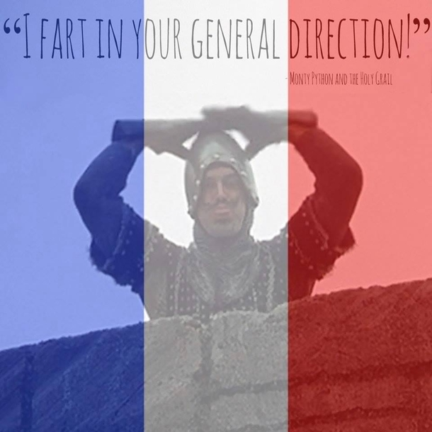 The best use of the French flag FB filter Ive seen so far - Meme Guy
