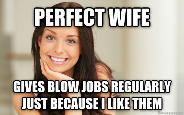 The Perfect Wife My Wife Meme Guy