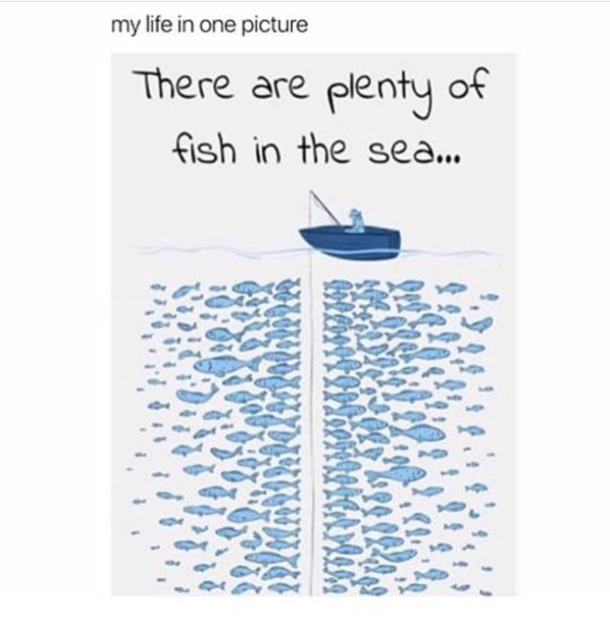 there are plenty of fish in the sea meme guy