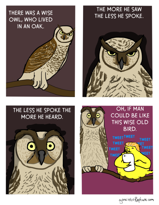 There was a wise Owl