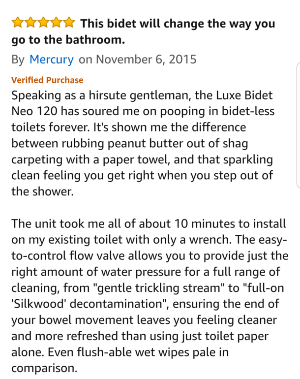 This Amazon review for a bidet