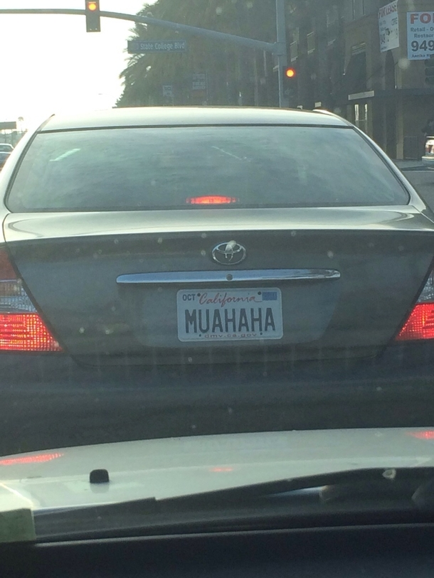 This Car Cut Me Off I Was Mad Until I Looked At Their