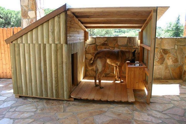 This dog has a nicer house than you