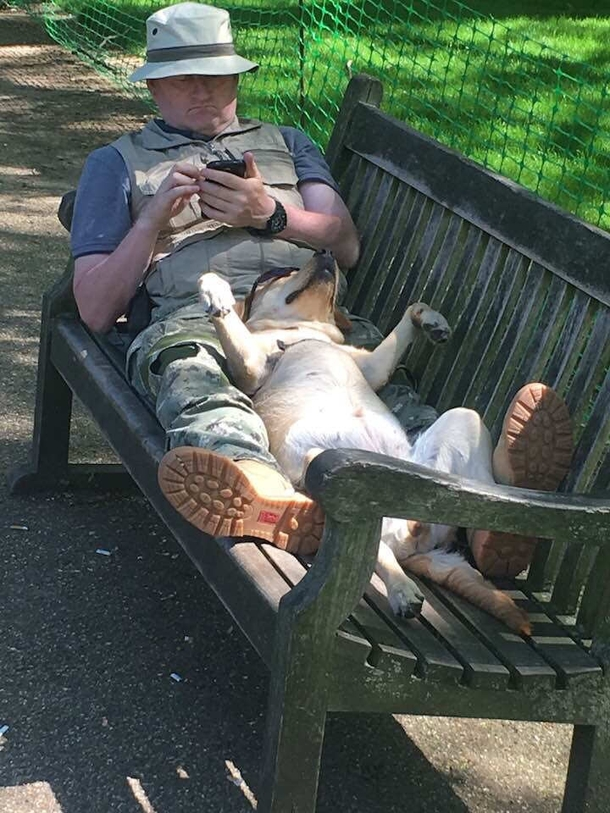 This guy chillin with his dog in London