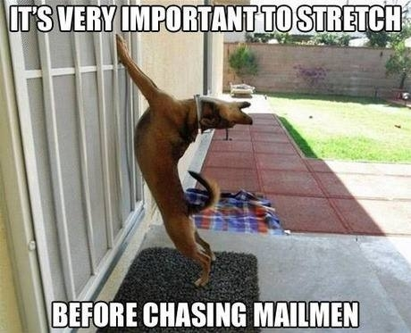 this time ill catch the mailman for sure 227139 this time ill catch the mailman for sure meme guy