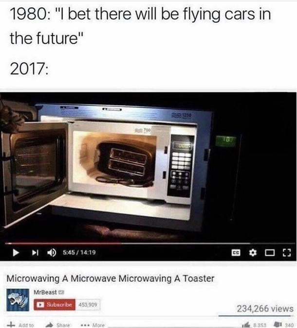 Too Bad They Didnt Stick The Microwave In The Oven Meme Guy