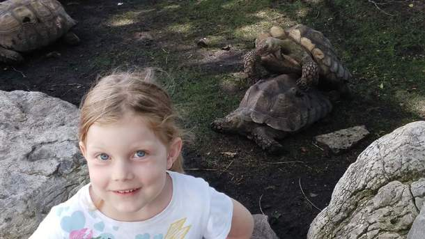Took my daughter to the zoo and she wanted a picture with the dancing turtles