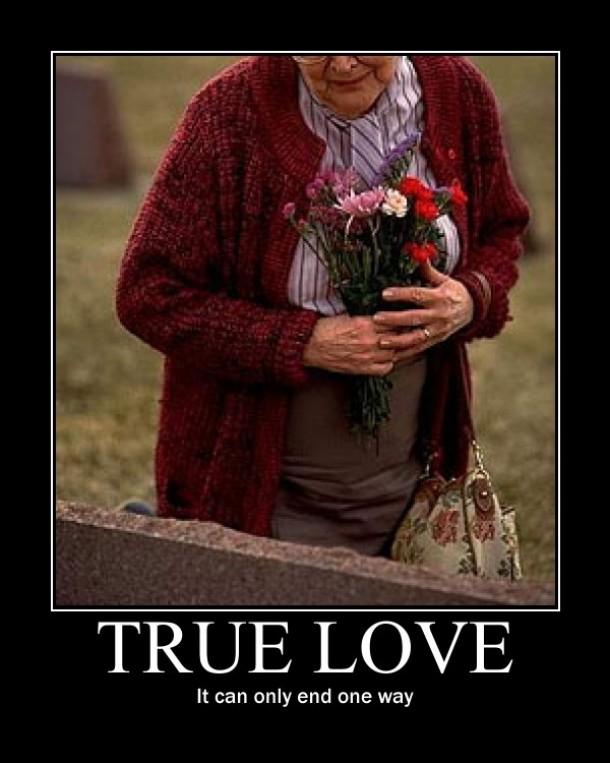True Love Meme Funny : True love meme