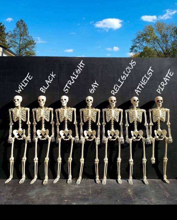 We are all the same almost all the same