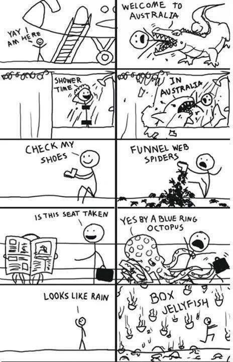 Cooking Meme Guy