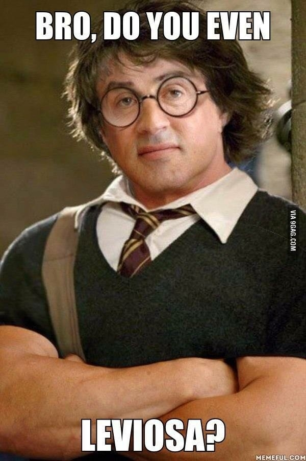 What if Sylvester Stallone was in Harry Potter