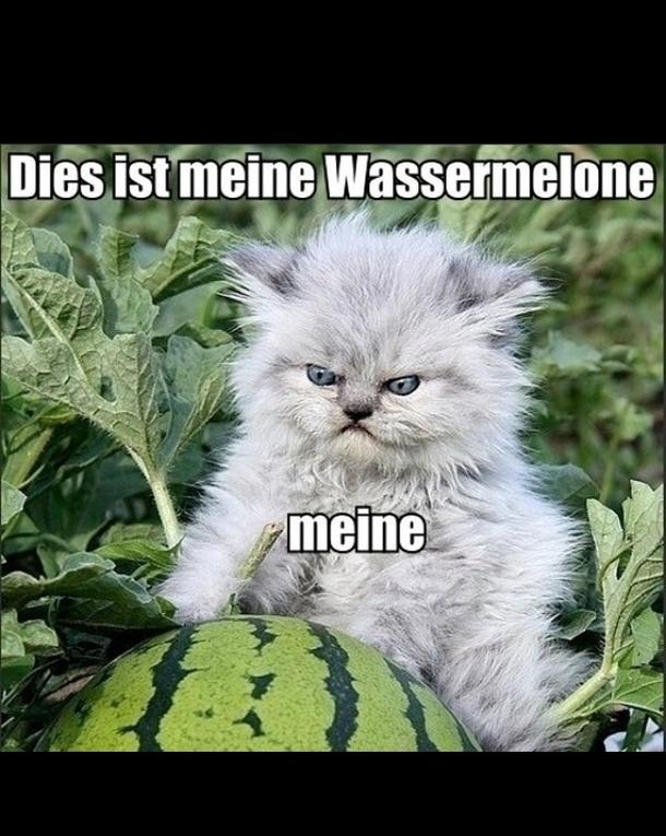 Feeling Down ||meme|| READ DESC PLEASE - YouTube |Feeling Down Meme