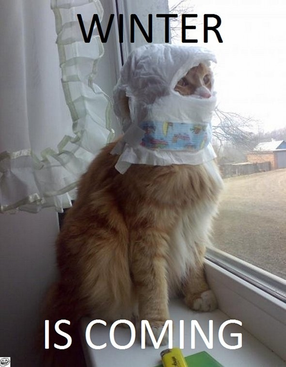 http://memeguy.com/photos/images/winter-is-coming-23184.jpg