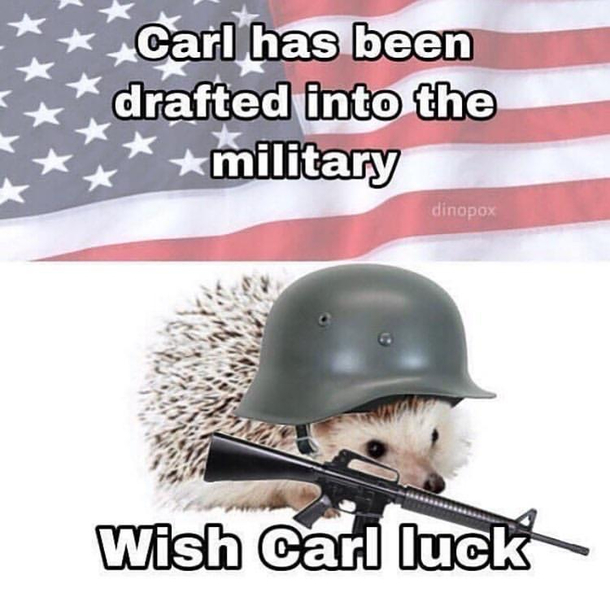 Wish Carl luck please