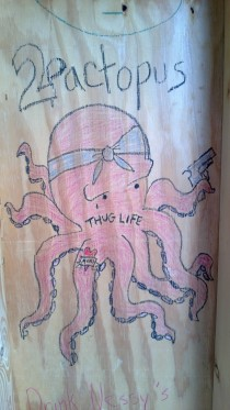 pactopus- found in the lifeguard shed at a beach in my town