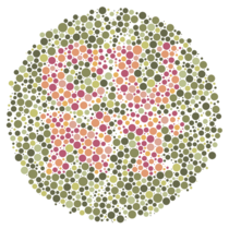 A female coworker didnt believe that Im colour blind Apparently Google images provided me with a pretty unfortunate example