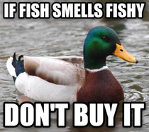 A good rule of thumb when purchasing fresh seafood