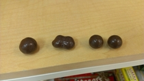 A moment of Malteser Mitosis