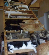 A stairway of Heaven