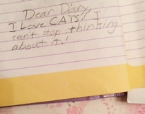 A very passionate single diary entry from my  year old self How am I not a cat hoarder by now  yrs later