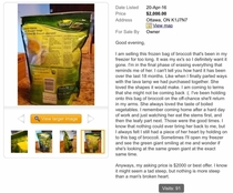 A year ago I found this  bag of frozen broccoli on my local classified ads