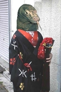 Accidentally image searched kimono dragon instead of Komodo dragon Was not disappointed