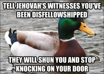 Actual Advice Mallard on Jehovahs Witnesses