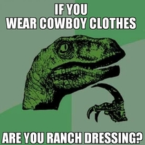 After attending a rodeo I must ask