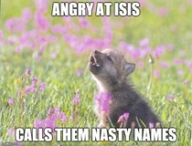 After hearing that the world leaders have agreed to call ISIS Daesh a name the terrorists hate