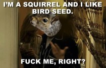 After reading the thread about how to Squirrel-Proof a Birdfeeder