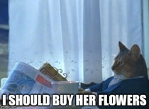 After realizing my SO has said Everyone loves getting flowers multiple times this year
