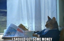 After seeing Wolf of Wall St
