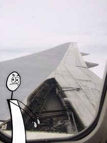All I could think of when i saw the mid-flight plane wing