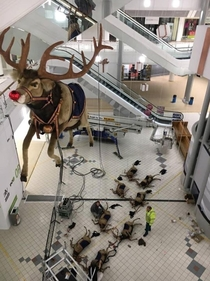 All of the other reindeer used to laugh and call him names So he murdered them