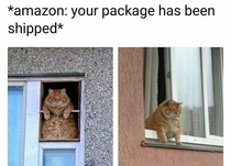 Amazon your package has been shipped