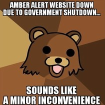 Amber alert website is down