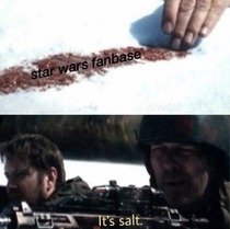 An accurate depiction of the Star Wars fanbase right now