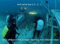 And now for the underwater report